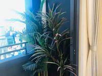 出售保利融创和光尘樾3室2厅0卫110平米150万住宅